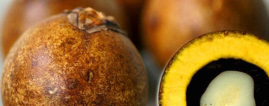 Resultado de imagem para fruto macauba